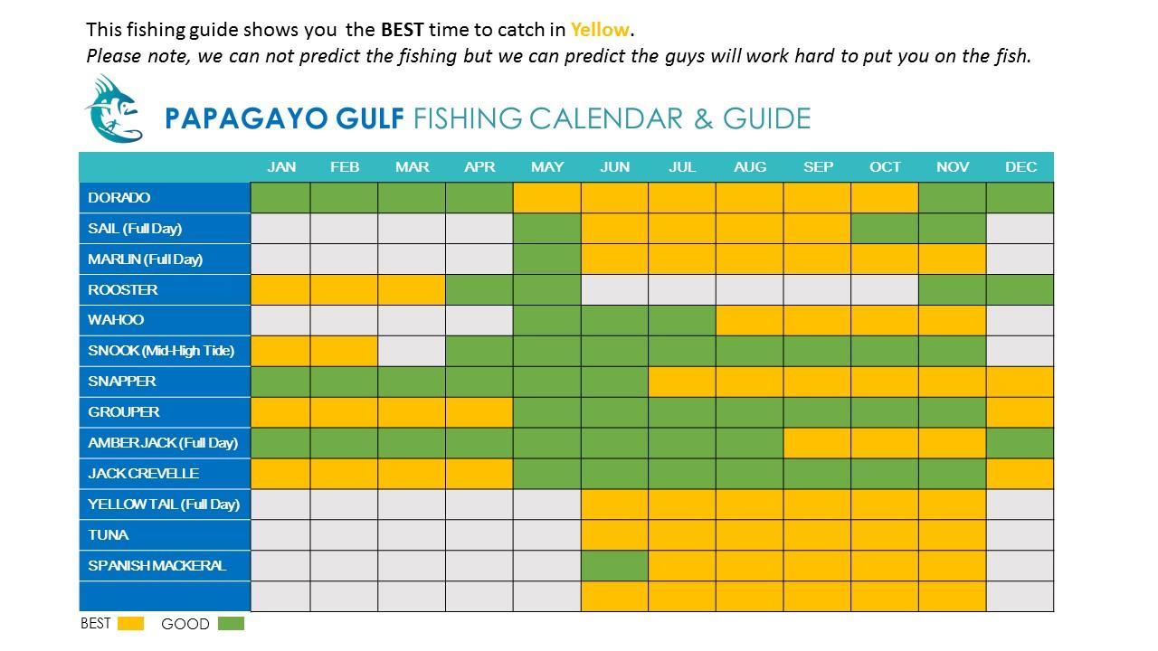 Fishing calendar papagayo gulf costa rica sport fishing for Costa rica fishing calendar