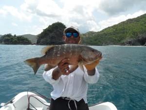 Papagayo Sport Fishing Charter Rates